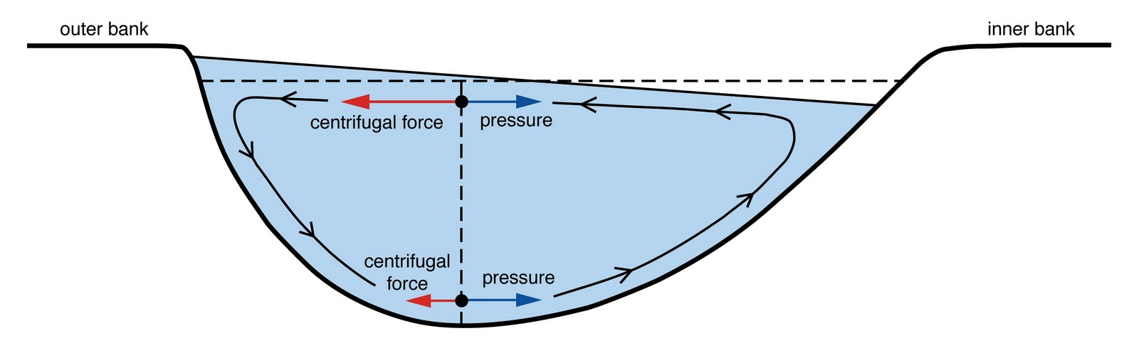 Einstein tea leaves meandering rivers and beer hindered settling secondary flow in a river the result of reduced centrifugal forces at the bottom pooptronica